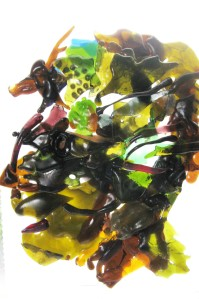 recreating Giuseppe Arcimboldi's painting into a fanciful Fused Glass profile facing left.